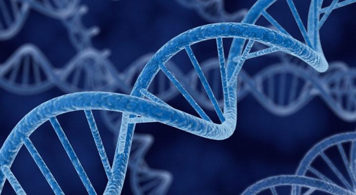 Un estudio genético te ayuda a entrenar mejor y rendir más.